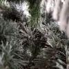 Rami e foglie in PE apertura ad ombrello di un albero verde innevato Cervino Slim Xone
