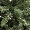 Rami e foglie verdi di un albero di natale slim jackie xone