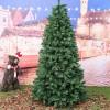 Foto reale e ambientata di un albero stretto verde folto Royal Slim Xone